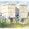 beehives-4